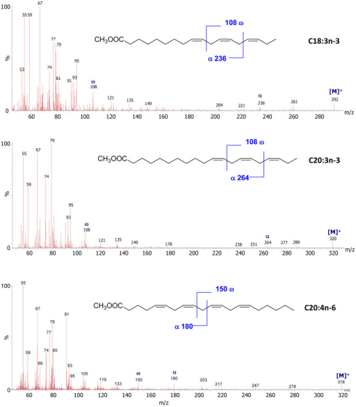 Selection of mass spectra of polyunsaturated fatty acids methyl esters.The typical ω fragmentation peaks at m/z 108 due to n-3 terminal groups, as well as the α fragments (at m/z 236 for C18:3n-3, m/z 264 for C20:3n-3, and m/z C180 for C20:4n-6) are clearly visible. Note that the methyl group is a consequence of the derivatization, and was not present in the original sample. Waters MassLynx V 4.1 software was used for processing spectral data.