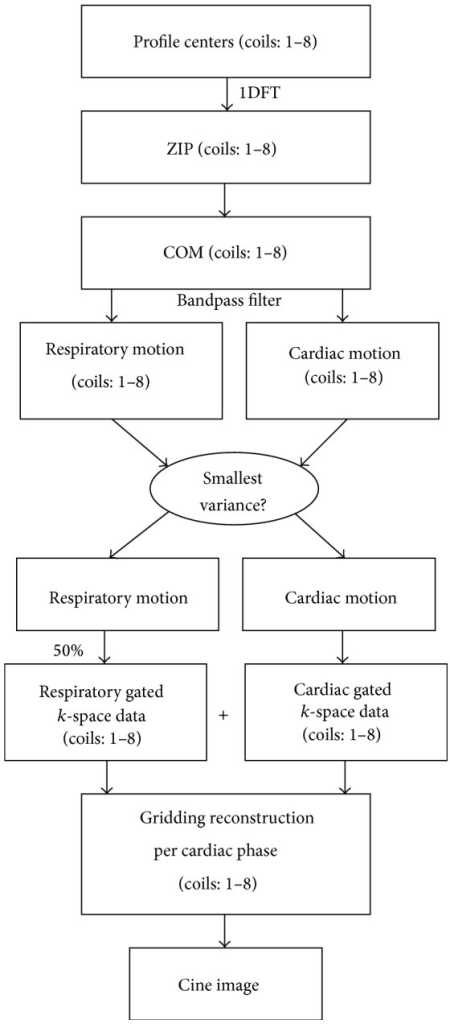 Block diagram of the algorithm used in self-gated reconstruction. Profile centers are used to derive self-gating signals. Respiratory and cardiac self-gating signals are used to classify profiles before using gridding reconstruction for each cardiac phase.