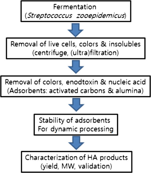 Schematic processes of bacterial fermentation and HA separations and characterizations.