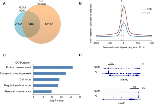oct4 chip seq at g2 m and g1 phase of cell cycle a ve open i