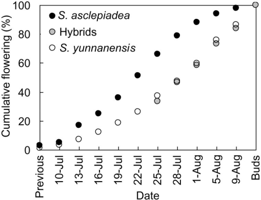 Cumulative flowering curves for S. asclepiadea and S. yunnanensis at Shangri-La Botanic Garden, Yunnan Province, China, based on up to 4 flowering stems from each of 12 plants per species, and including flowers already senesced previous to first survey date (previous) and buds remaining on final survey date (Buds). For hybrids, the first survey date was 29 July, and flowers senesced previously are represented as the value for 26 July.