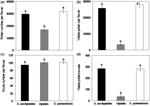 Reproductive parameters (means ± SE) for S. asclepiadea, hybrid and S. yunnanensis, including (a) pollen numbers, (b) viable pollen numbers, (c) ovule numbers and (d) viable P/O. Bars with different letters differ significantly (P < 0.05).