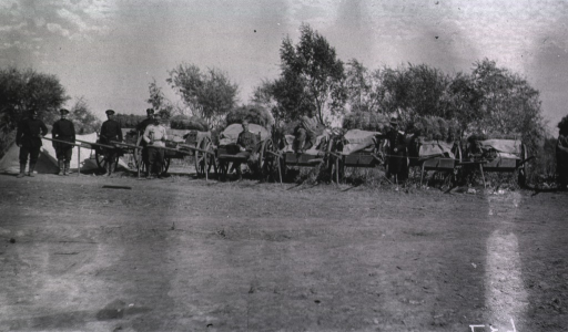 <p>Personnel and transport carts at a Division Lazaret.</p>