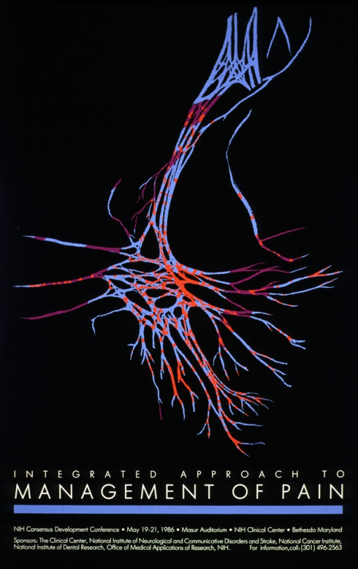 <p>Black poster with a multi-colored diagram of a neuron.  A phone number for further information is also listed.</p>