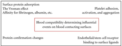 Main mechanisms influencing blood compatibility.