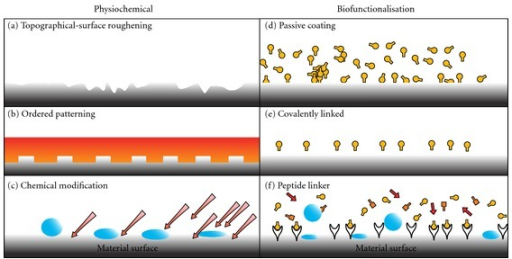 Examples of various physical, chemical, and biofunctionalisation techniques to enhance haemocompatibility. Biofunctionalised surfaces interact with cell surface receptors, that is integrins. Whereas physiochemical modification can influence cell-material interactions through charge, topography, and attractive/repulsive forces due to hydrophobic and hydrophilic interactions [26].