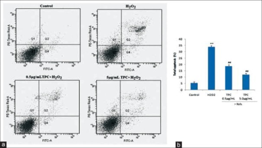 TPC suppresses the apoptosis of SH-SY5Y cells induced by H2O2 by flow cytometric analysis.The SH-SY5Y cells pre-treated with total phenolic compounds (TPC) for 1 h were exposed to 200 μM H2O2 for 24 h and then the cells were labeled with Annexin-V/PI staining and analyzed by flow cytometer. (a) Flow cytometric histograms of control, H2O2, and cells pretreated with 0.5 and 5 μg/ml TPC. (b) Fluorescence intensities of control group, H2O2 and H2O2 in cells pretreated with 0.5 and 5 μg/ml TPC. Each bar represents mean±SD of 3 estimations, **P<0.05 vs control group and ##P<0.05 vs H2O2 alone group.