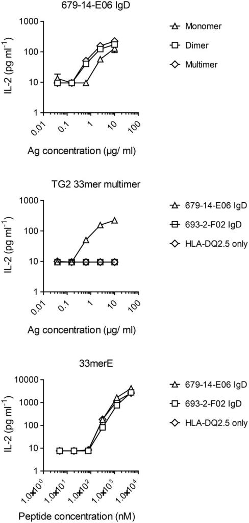 Presentation of gluten peptide by TG2-specific B cells upon incubation with TG2-gluten peptide complexesA20 B cells expressing HLA-DQ2.5 alone or in combination with TG2-specific (679-14-E06) or non TG2-specific (693-2-F02) IgD BCR were incubated with size-fractionated complexes of TG2 and FITC-33mer peptide, and their ability to present deamidated peptide to DQ2.5-glia-α2-specific hybridoma T cells was assessed by measuring release of IL-2. When incubated with the free, deamidated peptide (33merE), all A20 cells were capable of presenting peptide to the T cells. Only TG2-specific cells, however, could take up and present complexes of TG2 and peptide.