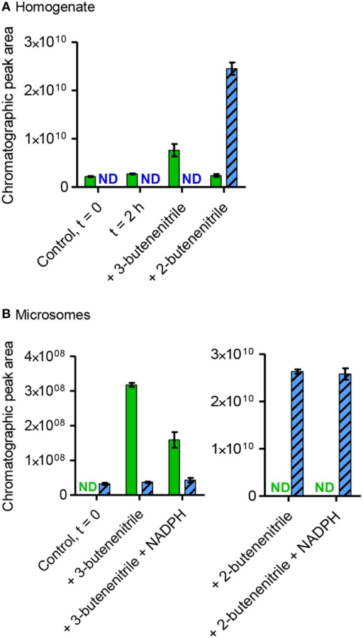 Presence, production and consumption of 3-butenenitrile (19) and 2-butenenitrile (20) following incubation with homogenate or microsomes from A. petiolata. Homogenate (A) or microsomes (B) were incubated with or without addition of exogenous 3-butenenitrile or 2-butenenitrile (mixture of (Z)- and (E)-isomers), homogenate for 2 h and microsomes for 30 min. The content of 3-butenenitrile (green bars, m/z 67, 4.2 min) and 2-butenenitrile (blue striped bars, m/z 67, sum of isomers: 3.8+4.5 min) at the end of the incubation period was determined as the EIC peak area as obtained by SPME-GC-MS. The mean ± range of two technical replicates is depicted. For homogenate the incubated unspiked control is shown to evaluate whether endogenous sinigrin in this fraction led to an increase in the amounts of 3- or 2-butenenitrile. ND, not detected; t = 0, time point zero.
