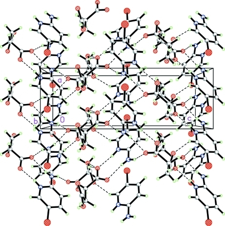 The crystal packing of the title compound, showing hydrogen-bonded (dashed lines) networks.
