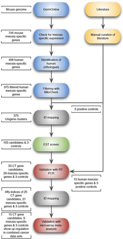 Schematic Flow Diagram Of The Approach Used For The Sel Open I