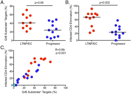 SIV-specific CD8+ T cells from LTNP/EC mediate greater lysis of SIV-infected CD4+ T-cell targets compared with progressors.GrB target cell activity (A) and infected CD4 elimination (ICE) (B) are shown for LTNP/EC (n = 10, GrB target cell activity; n = 11, ICE) and progressors (n = 11). Horizontal bars represent the median values. C. Correlation between ICE and GrB target cell activity (n = 22) was determined by the Spearman rank method. Red, blue and cyan dots represent LTNP/EC, progressors and one SIV-uninfected animal, respectively.