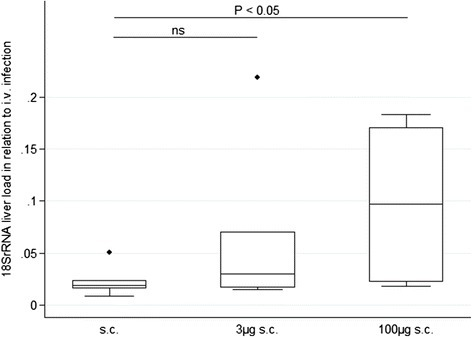 Relative 18S rRNA liver load following subcutaneous infection in relation to intravenously infected control animals. Animals were infected sc by a single injection of 104 SPZ. SPZ were administered either without supplementation (sc, n = 7) or supplemented with 3 μg histamine and 5 IU heparin (3 μg sc; n = 7) or 100 μg histamine and 5 IU heparin (100 μg sc, n = 5). The liver load was obtained at 48 hrs after infection and is expressed in relation to the median 18S rRNA liver load of four iv-infected control mice.