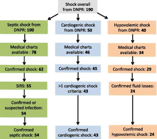 Flowchart of study population. Overview of patient selection from the DNPR, available medical charts, and confirmed diagnostic criteria for subtypes of shock.