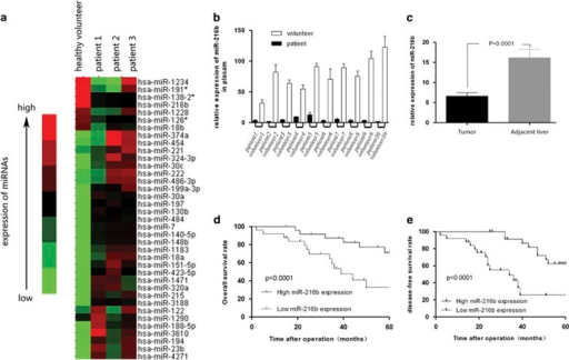 MiR-216b is downregulated in HCC tissues and plasma, direct correlation with prognosis of HCC patients. (a) miRNA array test of the expression levels of all kinds of miRNAs in plasma of HCC patients with HCC family history. (b) RT-PCR analysis of the expression levels of miR-216b between 10 pairs of HCC patients and healthy volunteer's plasma. The miR-216b expression levels in healthy volunteer plasma were much higher than in HCC patients' plasma. (c) RT-PCR analysis of the expression levels of miR-216b in 150 pairs of HCC patients' tissues and contrast the expression value between tumor and adjacent liver tissues. The expression of miR-216b in tumor tissues was significant higher than in adjacent liver. (d and e) After operation, the 5-year cumulative survival rate and disease-free survival rate of low miR-216b expression group is much lower than high expression group, and P<0.05