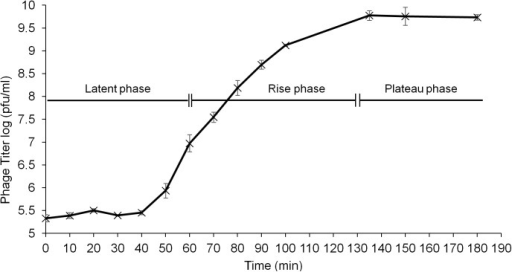 One-step growth curve of phage ɸAPCM01 with S. mutans strain DPC6143 in BHI broth at 37°C.Three independent experiments were carried out. Error-bars indicate standard deviation.