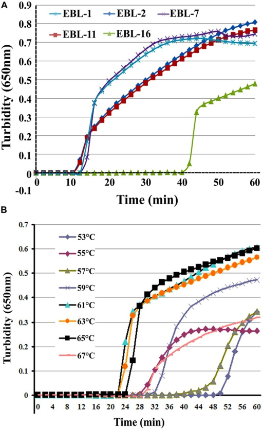 The most appropriate primers and reaction temperatures for the reverse transcription loop-mediated isothermal amplification (RT-LAMP) assay. Turbidity was monitored and recorded every 6 s for five sets of primers used to amplify the target gene with a Loopamp real-time turbidimeter at 650 nm. (A) A total of five sets of primers including EBL-1, EBL-2, EBL-7, EBL-11, and EBL-16 were designed to detect artificial EBOV RNA. (B) Reaction temperatures ranged from 53 to 67°C with 2°C intervals.