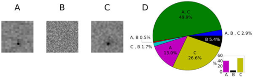 A, B, C: Representative example of STA of one neuron considering stimulus A, B) and C). D: Number of RFs mapped with each stimulus.