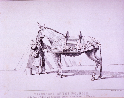 <p>A horse with a litter along its side on which lies a patient; an attendant stands with the horse, and in the background are several tents.</p>