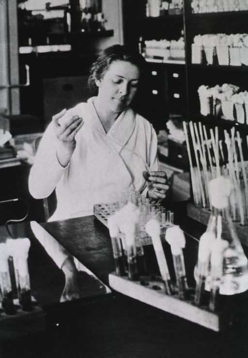 <p>Interior view of laboratory: half-length view of Alice Evans as she transfers a substance between tubes using a pipette.</p>