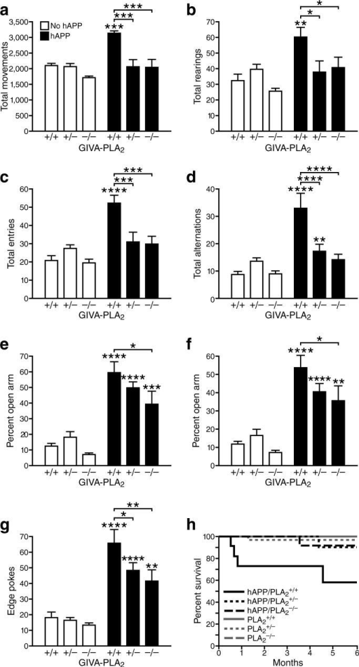 GIVA-PLA2 reduction prevents hyperactivity, abnormal anxiety/exploration-related behavior, and premature mortality in hAPP mice. a–g, Mice (n=8−15 mice per genotype, age: 4−6 months) were tested in the open field (a,b), the Y maze (c,d), and the elevated plus maze (e–g). Genotype effects and interactions were assessed by two-way ANOVA. a, Total movements (P<0.001 for hAPP effect, P<0.0001 for PLA2 effect, P<0.01 for interaction). b, Total rearings (P<0.001 for hAPP effect, P<0.05 for PLA2 effect, and P<0.05 for interaction). c, Total entries (P<0.05 for hAPP effect, P<0.0001 for PLA2 effect, and P<0.001 for interaction). d, Total alternations (P<0.0001 for hAPP effect, P<0.001 for PLA2 effect, and P<0.0001 for interaction). (e) Percent time spent in open arms (P<0.0001 for hAPP effect, P<0.05 for PLA2 effect, and P=0.259 for interaction). (f) Percent distance traveled in open arms (P<0.0001 for hAPP effect, P<0.05 for PLA2 effect, P=0.237 for interaction). g, Edge pokes (P<0.0001 for hAPP effect, P<0.01 for PLA2 effect, P=0.133 for interaction). *P<0.05, **P<0.01, ***P<0.001, ****P<0.0001 vs. PLA2+/+ mice or as indicated by brackets (Dunnett test, mean ± s.e.m.). h, Kaplan-Meier survival analysis of 189 mice revealed premature mortality in hAPP/PLA2+/+ mice (P<0.001 by log-rank chi-square test), but not in hAPP/PLA2+/− or hAPP/PLA2−/− mice.