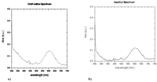 UV/Visible absorption spectra of a) holoCotA crystal and of b) apoCu(I) crystal.