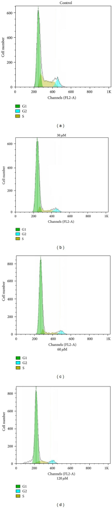 DNA content and cell cycle analysis of BEL-7402 cells after complex 2 treatment. BEL-7402 cells were cultured with either 0.1% DMSO (control), 30 μM, 60 μM, and 120 μM of complex 2 for 48 h. The percentage of nonapoptotic cells within each cell cycle was determined by flow cytometry.