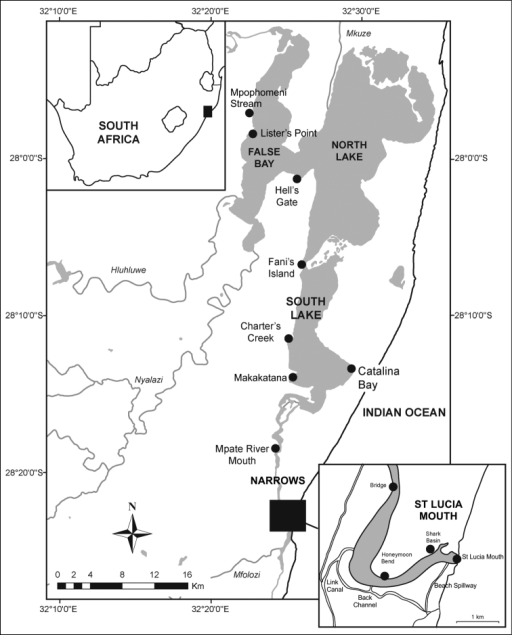 Map of the St Lucia estuarine lake, with position of main collection sites used in the study. Adapted from Peer et al. (2014).