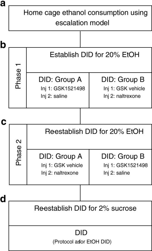 Overview of the experimental protocol. The experiment was divided into four parts: a animals consumed ethanol in their home cage using the ethanol escalation model; b phase 1: following the establishment of baseline ethanol consumption using the DID method animals were divided into two groups with group A receiving GSK1521498 and group B receiving naltrexone as the test compound; c phase 2: following a 2-week wash-out period, DID was re-established and a cross-over design was employed such that group A received naltrexone and group B received GSK1521498 as the test compound; d compound specificity was tested using a 2 % sucrose DID protocol