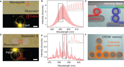 Organic PICs based on printed microstructures.(A) Microscopy image of a printed microring resonator coupled with a tangentially connected 1D waveguide (top) with two laser-burned termini (marked with red rectangles) for light outcoupling. (Bottom) The resonance modes generated by exciting the microring were collected by the waveguide and guided to the termini. (B) Corresponding spectrum from the laser-burned slot showing the guided ring resonance modes from the directional output in the coupled optical waveguide. (C) Schematic of an as-printed add-drop filter based on the coupling between 1D waveguides and microring resonators. When mixed light signals (white arrow) are inputted from the upper waveguide, the wavelength at resonance (red arrows) is guided into module I, whereas another wavelength goes into module II (blue arrows) on its distinct resonance modes. The signals can thus be distributed into designated ports, and the residual light would pass through the top bus (green arrow). See fig. S12 for details. (D) Microscopy image of coupled resonators obtained by printing two conjugated microrings at a distance of ~500 nm (top). (Bottom) The left ring was partially excited, and the right ring was illuminated through resonator coupling. The output spectrum was collected from the point of joining, indicated with a red square. (E) Corresponding spectrum shows enhancement of modulated resonance modes from the Vernier effect in coupled cavities. (F) Schematic of printed CROWs for optical memory based on programmable printed microring chains. The CROW structure produces a newly generated optical eigenmode (yellow) that can confine photons inside by coupling the resonance modes in each ring. This eigenmode brings isolated states to memorize light signals, similar to energy levels in atom clusters. More eigenmodes at different wavelengths can be obtained from the coupling between vertical ring chains and horizontal ring chains, which are shown in detail in fig. S13.