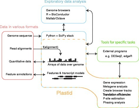 Uses of Plastid in analysis workflows. Plastid (yellow box) contains tools for both exploratory data analysis (blue, center) and command-line scripts for specific tasks (green, right). Plastid standardizes representation of data across the variety of file formats used to represent genomics data (left). Quantitative data are represented as arrays of data over the genome. Read alignments may be transformed into arrays using a mapping function appropriate to a given assay. Transcripts are represented as chains of segments that automatically account for their discontinuities during analysis. Plastid integrates directly with the SciPy stack (blue, center). For exploratory analysis in other environments (blue, above) or further processing in external programs (right, green), Plastid imports and exports data in standardized formats