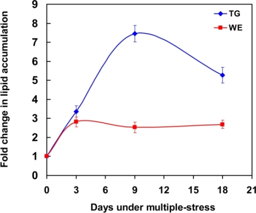 Accumulation of storage lipids by Mtb under multiple-stress in vitro.Mtb was subjected to a combination of four stresses - high CO2, low O2, acidic pH and nutrient starvation. Total lipids were extracted at 0, 3, 9 and 18 days and resolved on silica-TLC using hexane-diethyl ether-formic acid (90∶10∶1, v/v/v). Lipids were visualized by charring after spraying with dichromate-sulfuric acid and quantified by densitometry using Alpha Innotech Gel documentation system and AlphaImager 2200 software (Alpha Innotech, USA). TG, triglycerides; WE, wax esters.