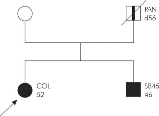 "Family pedigree ""suspected HNPCC""."