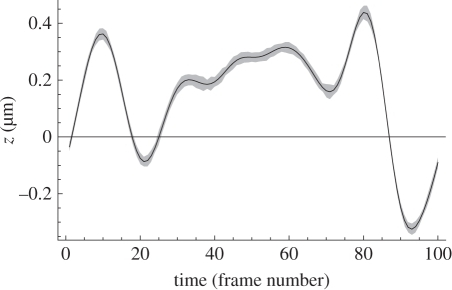 Actual position (line) and ML solution spread to the 1σ level (grey area) for a simulated movie of a particle on a smoothed random trajectory. The 'time' axis represents 100 simulated frames of data with an average of 768 detected photons per frame distributed between the three in-focus images (approx. 256 per image). A total of 50 movies were simulated and no smoothing has been applied to the solutions, so the grey area represents the scatter on the ML z estimates obtained from single data frames. In real measurements, and in the smoothed trajectory used in the simulation, the particle depth in consecutive frames must be correlated at some level, thus smoothing the time sequence of z estimates could have been used to reduce the spread in solutions. The unsmoothed variance from these movies is shown by the dots in figure 4.