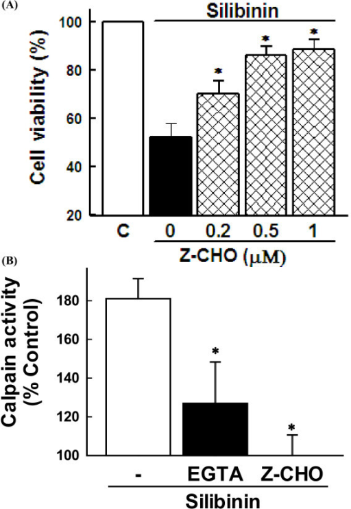 Role of calpain in silibinin-induced cell death. (A) Cells were exposed to 30 μM silibinin for 36 h in the presence of various concentrations of calpain inhibitor (Z-CHO). Cell viability was estimated by MTT assay. Data are mean ± SEM of four independent experiments performed in duplicate. *p < 0.05 compared with silibinin alone. (B) Cells were exposed to 30 μM silibinin for 24 h in the presence of 2 mM EGTA and 0.5 μM Z-CHO. Calpain activity was measured by calpain assay kit. Data are mean ± SEM of four independent experiments performed in duplicate. *p < 0.05 compared with silibinin alone.