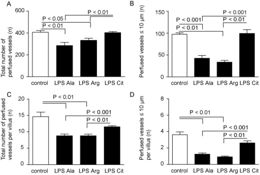 Circulation measurements with SDF imaging in the control, LPS-Ala, LPS-Arg and LPS-Cit groups.(A) L-Citrulline supplementation improved the number (mean±SEM) of measurable perfused vessels in the jejunal microcirculation during endotoxemia, (B) in particular of vessels with a diameter ≤10 µm (P<0.01), compared to LPS-Ala and LPS-Arg supplemented animals. (C) The total number of perfused vessels per villus and (D) microcirculatory vessels with a diameter ≤10 µm per villus were also significantly lower in the LPS-Ala and LPS-Arg supplemented animals compared to the control and LPS-Cit group.