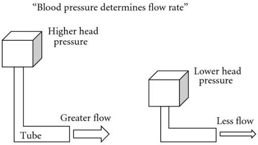 Higher head pressure produces greater flow when the tube keeps the same diameter without any influence.