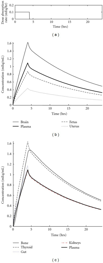 Concentration profiles in all physiological compartments resulting from a single, time-release 900 mg dosage of lithium drug. Initial lithium concentration in the body is 0 mEq/mL. (a) Profile of drug release pulse. (b) Lithium concentration time courses in the most important compartments for the study, with fetus labeled. (c) Lithium concentration profiles for less critical compartments.