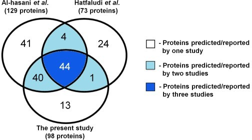 Comparison of OMPs predicted in the present study to those in previously published research. Diagram comparing the numbers of OMPs predicted in the present study with those predicted by Al-hasani et al. [51] and reported by Hatfaludi et al. [56]. Indicated are the numbers of proteins predicted/reported by one, two or all three studies. The total number of proteins predicted/reported by each of the three studies is shown in parentheses.