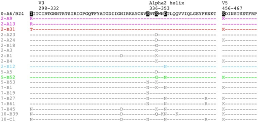 Amino acid alignment of longitudinal R880F Envs.Longitudinal Env amino acid sequences from 20 R880F contemporaneous plasma escape variants were aligned and examined using Sequencher v5.0 and Geneious v5.0.3 software, with particular emphasis on the three mutational hot spots–C2, the alpha2 helix in C3, and V5–that developed during early infection, as compared to the transmitted/founder Env (0-A6/B24). Dashes represent conserved positions. Subject-specific amino acid numbering labels the demarcated regions at their points of origination. Five residues including 295, 335, 338, 341, and 456 (HXB2 residues 293, 334, 337, 340, and 460) were specifically interrogated to define their contributions to nAb evasion and have been highlighted in black in 0-A6/B24 for easy identification. Colored sequences (2-A9/2-A13 in magenta, 2-B31 in red, 2-B12 in cyan, and 5-B52 in green) indicate Envs that succumbed to neutralization, in varying combinations, by the isolated R880F mAbs. Note that additional differences from the transmitted/founder Env, which occurred over time in these sequences but are not diagrammed here, may be viewed in Figure S1.