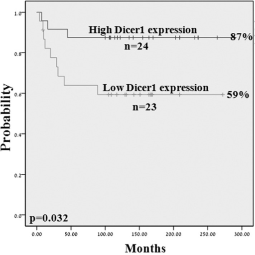Kaplan Meier analysis by Dicer1 expression.Kaplan Meier analysis for PFS by Dicer1 expression (n=47): high and low expression levels of Dicer1 were determined as above (n=24) or below (n=23) the median expression level.