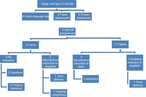 Ten monochorionic diamniotic pregnancies – An overview of the outcomes