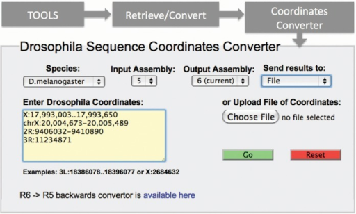 Coordinates Converter. This tool can be accessed by the 'Tools' menu in the blue navigation bar found at the top of FlyBase pages, under both the 'Retrieve/Convert' sub-menu (shown) and the 'Genomic/Map Tools' sub-menu. A variety of input formats are accepted, and input lists may be uploaded from a text file or entered directly into the input box; output may be to a browser view or a downloadable file (menu at upper right). By default, the input assembly is set to Release 5 and the output to Release 6, but other forward conversions can be specified. For conversion from Release 6 back to Release 5, an analogous Coordinates Converter tool is provided (link at lower left).