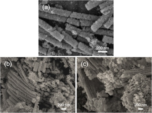 SEM images of the NT powders. (a) SEM morphology of the as-prepared NT powders. SEM images of the NT powders annealed at (b) 450°C and (c) 750°C.