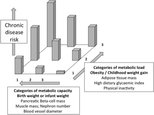 Schematic diagram illustrating the capacityload mode open i schematic diagram illustrating the capacityload model of metabolic dysfunction both decreasing metabolic capacity ccuart Images