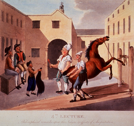 <p>The fourth in a series of four numbered prints satirizing the recently opened Royal Veterinary College in London. In this print, a horse is tied to a wooden frame in a courtyard. Two men demonstrate the procedure for docking a horse's tail; two other men are sitting on a bench observing; a third man holds the severed tail.</p>