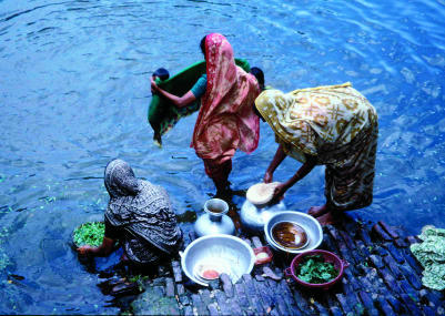 Women at a Village Pond in Matlab, Bangladesh, Washing Utensils and VegetablesThe woman on the right is putting a sari filter onto a water-collecting pot (or kalash) to filter water for drinking. (Picture courtesy of Anwar Huq, University of Maryland Biotechnology Institute, Baltimore, Maryland, United States.)
