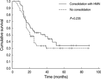Progression-free survival of HMM-treated and -untreated patients.