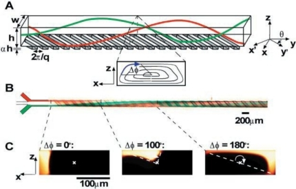 (A) Schematic diagram of channel with ridges; (B) Optical micrograph showing a top view of a red stream and a green stream flowing on either side of a clear stream in the channel and (C) Fluorescent confocal micrographs of vertical cross sections of the microchannel [66].
