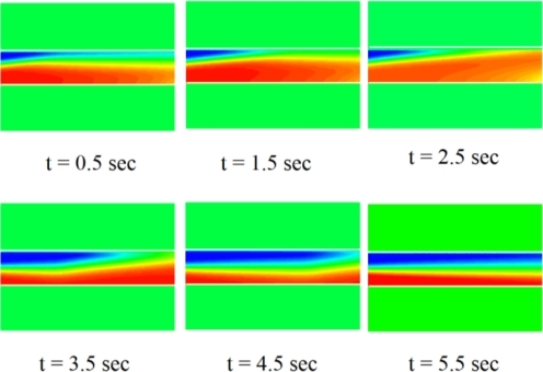 Sequence of concentration distribution in confluent stream mixing [33].